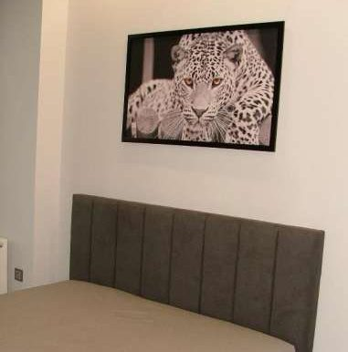 sale-2-room-apartment-in-odessa-with-repairphoto-1